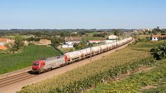 Medway Cimento nº 50130 em Salreu (João Pagaimo) Tags: portugal railway ferrovia cimento medway cp5600 salreu freight mercadorias