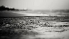 Vieste, summer 2016 (Stefano Rugolo) Tags: stefanorugolo pentax k5 pentaxk5 smcpentaxm50mmf17 ricohimaging depthoffield vieste summer 2016 archive sea pov pof seashore seaside water puglia italy manualfocuslens manualfocus manual vintagelens primelens vintageprime vintageprimelens monochrome blackandwhite