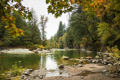 Breitenbush River, Cleator Bend, Oregon (icetsarina) Tags: santiamriver oregon creatorbend fall autumn leaves saariysqualitypictures