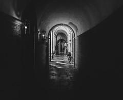 The Tunnel (ALGHIME) Tags: bnw bw blackandwhite monochrome monochromatic black white grey shadow shadows shadowy highcontrast highiso grainy light dark lamp hallway floor