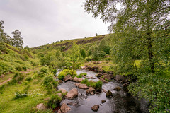 _DSC.0163 - Hebden Beck at Blakedean (SWJuk) Tags: widdop england unitedkingdom swjuk uk gb britain yorkshire westyorkshire calderdale hebdenbridge hardcastlecrags hebdenbeck river stream water hills hillside trees 2018 jun2018 summer nikon d7100 nikond7100 rawnef lightroomclassiccc tokina1116mm wideangle landscape