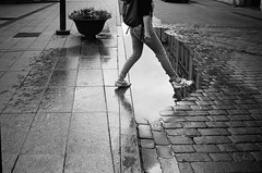 jump (gato-gato-gato) Tags: 35mm asph iso400 ilford ls600 leica leicamp leicasummiluxm35mmf14 leicasummiluxm35mmf14asph mp messsucher noritsu noritsuls600 strasse street streetphotographer streetphotography streettogs summilux wetzlar analog analogphotography aspherical believeinfilm black classic film filmisnotdead filmphotography flickr gatogatogato gatogatogatoch homedeveloped manual mechanicalperfection rangefinder streetphoto streetpic tobiasgaulkech white wwwgatogatogatoch vilnius vilniausapskritis litauen lt manualfocus manuellerfokus manualmode schwarz weiss bw blanco negro monochrom monochrome blanc noir strase onthestreets mensch person human pedestrian fussgänger fusgänger passant eu europa travel reise urlaub holidays