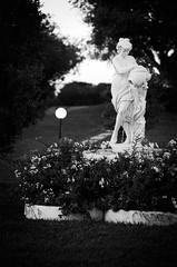 33727 - Garden (Diego Rosato) Tags: garden giardino statua statue lamp lampada fiori flowers lampione bianconero blackwhite nikon d750 85mm nikkon rawtherapee