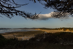 Badgers Beach, Narawntapo National Park (Steven Penton) Tags: tasmania australia badgers beach