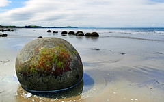 Moeraki Boulders New Zealand (Bernard Spragg) Tags: geology newzealand seashore lumix nature m moerakiboulders