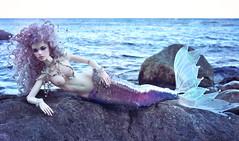 12ф (LoverOfRoses) Tags: bjddoll bjdphotography bjdhobby bjd bjdart bjdlook mermaid