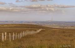 A landscape. ( Explored ) (nondesigner59) Tags: westyorkshire landscape emleymoortvtransmitter fence moorland view copyrightmmee eos7dmkii nondesigner nd59