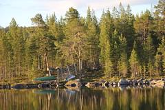 IMG_0889 (www.ilkkajukarainen.fi) Tags: suomi finland vene veneet rowing boats soutu lappi lapland pohjoinen north lake järvi water vesi forest metsä arctic circle napapiiri inari eu europa scandinavia happy life visit travel travelling