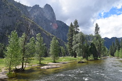 Merced River and trees (Randy Gardner 88) Tags: yosemite yosemitenationalpark california nationalparkservice nationalparksamericasbestidea trees mountains granite cliffs waterfalls waterfall merced mercedriver yosemitevalley may2016 2016