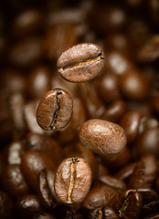 Macro photo of flying coffee beans. All beans in focus. (hoboton) Tags: coffee bean macro brown roasted dark drink seed caffeine food espresso closeup aroma cappuccino energy grain ingredient cafe nature agriculture freshness arabic aromatic beverage grained heap scented nobody coffe robusta cafeteria taste scent brewed flavor natural abstract drinking full photography arabica fly flying fried breakfast cofe color focus