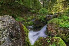 Schwendebach (Giuseppe Caponio) Tags: bach fluss landschaft langzeitbelichtung moos steine wald wasser wasserfall weissbad kantonappenzellinnerrhoden schweiz ch