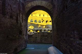 Coliseo Romano _DSC8250