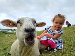 The girl and the nice sheep (Mah Nava) Tags: schaf mädchen girl sheep گوسفند kid