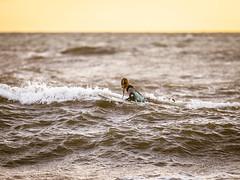 DSC04948.jpg (fotolasse) Tags: sonyhalmstadstorm surfing halmstad storm knud havet sea vågor vatten hav natur klippor solnedgång