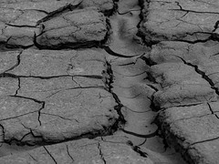 Wülfrath - Steinbruch (YvoWupp) Tags: steinbruch wülfrath europa deutschland dryness trockenheit olympus omd10 drought dürre germany europe