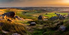 Evening at Stanage Edge (Peter Quinn1) Tags: sheep peakdistrict derbyshire derwentvalley stanageedge panorama darkpeak evening millstones millstonegrit abandonedmillstones