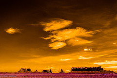 clouds and formations (robpolder) Tags: 2018 fullspectrum infrared usa cloud nikonv2 590nm