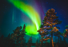 36282210335_5644374ee3_o (1) (Timetravels Incoming Ltd) Tags: auroras aurora borealis northern lights lapland