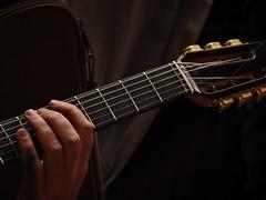 (degreve.sarah) Tags: guitarist hand guitar fingers sound