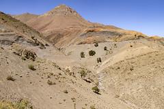 2018-4612 (storvandre) Tags: morocco marocco africa trip storvandre telouet city ruins historic history casbah ksar ounila kasbah tichka pass valley landscape