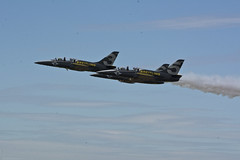 DSC_7029 copie (angel_fardreamer) Tags: breitling breitlingjetteam bafd 2018 belgium air force day kleinebrogel