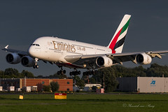 UAE_A380-800_A6EDU_AMS_31AUG2018 (Yannick VP) Tags: civil commercial passenger pax transport airplane aeroplane aircraft jet jetliner airliner uae ek emirates airlines airbus a380 380800 a388 a6edu ams eham amsterdam schiphol airport netherlands nl europe eu august 2018 approach landing runway rwy 36r aviation photography planespotting airplanespotting