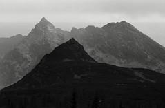 tatry (marek.golkowski) Tags: tatry mountains analog bw film agfaapx100