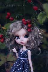 Onirism (Lovely-kalea) Tags: pullip lupinus groove wig monique