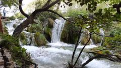 20180818_094151 (rmassart) Tags: m08 y2018 croatia plitvicka jezera plitvickajezera plitvichka lakes