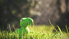 Dino (jamy5050) Tags: dinosaure herbe jardin soleil peluche vert