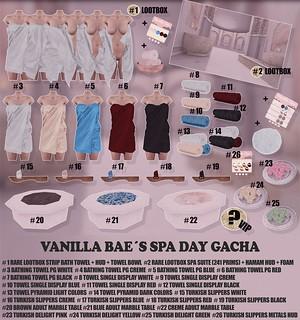 Vanilla Bae Spa Day Gacha Key