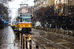 Winter in Sofia (fede_gen88) Tags: sofia bulgaria со́фия българия winter snow tramway street city tram snowing cold
