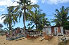 Cabanes de pêcheurs à Ambatozavary (RarOiseau) Tags: madagascar nosybe réservedelokobe bateau pirogue plage sable village ambatozavary