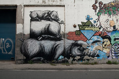 ROA (rrover69) Tags: buethewarrior 2018 belgie gent grafitti roa streetart vakantie vlaanderen