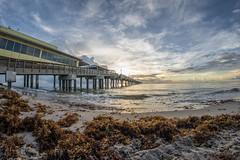 (CeativeCapturez) Tags: sunrise sonyalpha southflorida a7iii rokinon12mm clouds ocean beach colors waves pier dania ftlauderdale palmtrees destination sand paradise morning