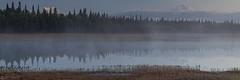 Morning reflections in the lake - Alaska (Captures.ch) Tags: wolken clouds tag day morgen morning alaska denali denalistatepark water wasser wald valley tree tal see mountains landschaft landscape lake hill himmel gras forest berge baum capture aufnahme