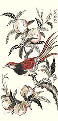 Peach and bird-of-paradise (Japanese Flower and Bird Art) Tags: flower peach prunus persica rosaceae bird birdofparadise paradisaea paradisaeidae shigenaga nishimura ukiyo woodblock print japan japanese art readercollection