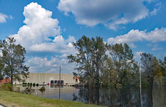 Flooding At Alamac Knits Plant. (dccradio) Tags: lumberton nc northcarolina robesoncounty outdoor outdoors outside sky bluesky cloud clouds cloudformation building architecture plant alamacknits knitsplant tree trees greenery foliage leaf leaves treebranches treebranch treelimbs flagpole branch branches water bodyofwater flood flooding hurricaneflorenceaftermath grass lawn shrubs ground bushes reflection pole powerpole utiitypole alamacroad manufacturing industry industrial samsung galaxy smj727v j7v cellphone cellphonepicture photooftheday photo365 project365 dock loadingdock