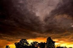 After the tornado. (Photolove2017) Tags: sky silhouettes sun storm tornado colors clouds rain windy d3100 ottawagatineau quebec ontario canada forecast weather nikondx tiaphoto photolove2018 park nature