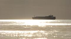 MSC_Joy.Gulf_of_Riga (ЕгорЖуравлёв) Tags: latvia latvija sea baltic vessel ship 2018 canon gulfofriga msc латвия судно