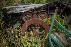 The Emacerator (frattonparker) Tags: btonner isleofwight lightroom6 nikond810 pareidolia rusty tamron28300mm frattonparker gesichter foundobjectswithfaces machinery farmyard junk scrapheap abandoned derelict overgrown