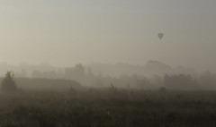 Flying (Theo Bauhuis) Tags: haaksbergeseveen herfst mist ochtend morning fog balloon luchtballon flying ochtendr red