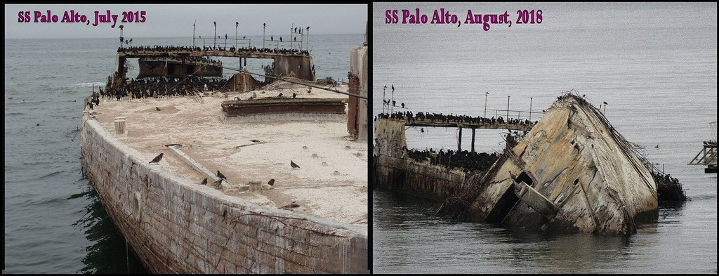 SS PaloAlto 95