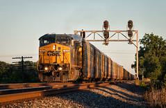 Low Light at Longley (Wheelnrail) Tags: csx csxt co signal chesapeake ohio oh pemberville subdivision sub columbus toledo signals ge c408w autorack sunset golden