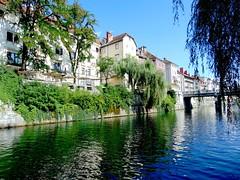 ljubljana-râul ljubljanica (băseşteanu) Tags: ljubljana ljubljanica slovenia rau river apa water landscape city oras urban
