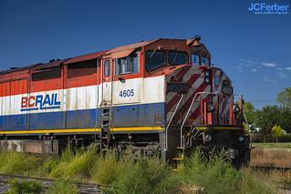 BCOL 4605 (8-40CM)