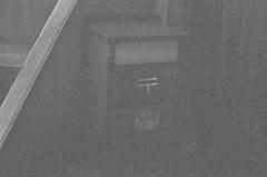 (Akira F.) Tags: filmphotography nikon blackandwhite bw monochrome nikonfm2 film 50mm filmisnotdead filmcamera analog tokyocameraclub ファインダー越しの私の世界 写真好きな人と繋がりたい