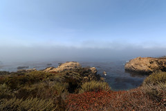 Riserva naturale statale Point Lobos (raffaele pagani) Tags: pointlobos pointlobosstatenaturalreserve riservanaturalestatalepointlobos smca areadiconservazionemarinastatale statemarineconservationarea areamarinaprotetta riservamarina marineprotectedarea marinereserve carmel carmelbythesea montereycounty montereypeninsula cabrillohighway highway1 costapacifica pacificcoast oceanopacifico pacificocean california unitedstates canon