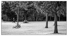 Striding out (Photography And All That) Tags: park woman walking striding walk stride trees bushes bicycle bike trunks treetrunks blackwhite blackandwhite monochrome monochromatic monochromes sony sonyalpha7mark3 sonyalpha sonyilce7m3 ilce7m3 grass space outdoors whitephotoborder parks street streetphotography stranger candid candids seat bench bicycles bikes