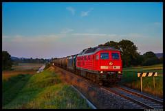 DB Cargo 232 703 + LTE 189 113, Kiebingen 29-08-2017 (Henk Zwoferink) Tags: rottenburgamneckar badenwürttemberg duitsland de lte 232 br232 703 henk zwoferink 189 113 siemens rastatt umleiter